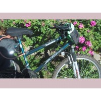 picture-mountain-bike-Northland-Mistral-woman-26-inches-2