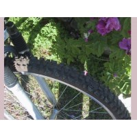 picture-mountain-bike-Northland-Mistral-woman-26-inches-3
