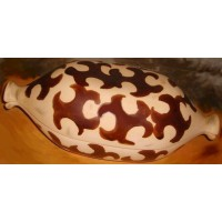 cocotte-argile-ceramique-cartier-beauce-6
