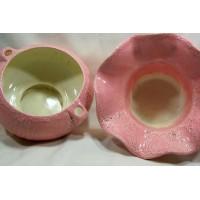 image-pot-violettes-africaines-rose-auto-arrosant-2