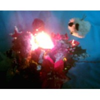 picture-lighted-Christmas-basket-table-center-4