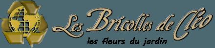 logo-Les-Bricolles-de-Cleo